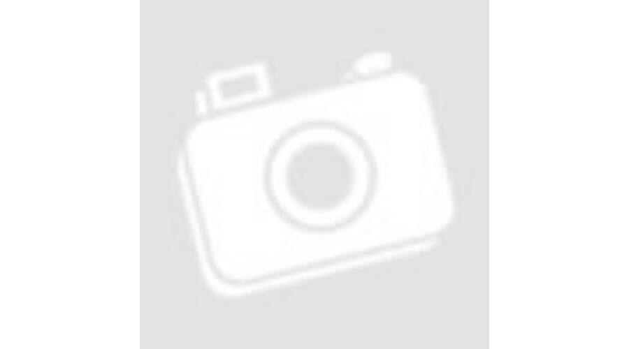 741f400f386c 3D Amerikai Pitbull Terrier mintás kids táska - Amerikai ...